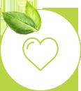 Jak na zdravý životní styl? | Zhubni chytře